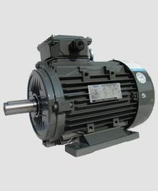 TECO东元铝壳电机