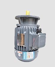 TECO东元F系列高效电机
